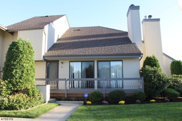 20 Brook St, Franklin Twp., NJ 08873 (MLS #3426158) :: The Dekanski Home Selling Team