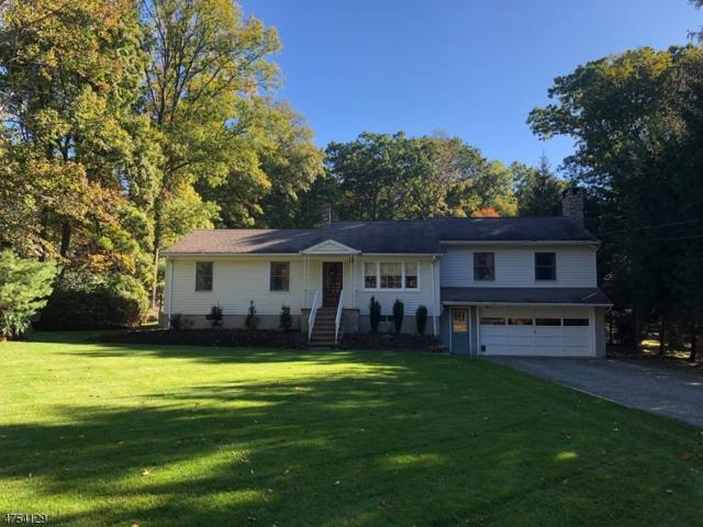 256 Burnt Meadow Rd, Ringwood Boro, NJ 07456 (MLS #3426225) :: The Dekanski Home Selling Team