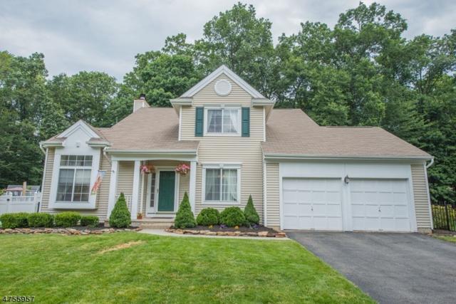 9 Rolling Hills Dr, Mount Olive Twp., NJ 07828 (MLS #3427030) :: The Dekanski Home Selling Team