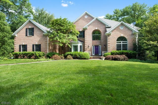 97 Wild Azalea Ln, Montgomery Twp., NJ 08558 (MLS #3427333) :: The Dekanski Home Selling Team