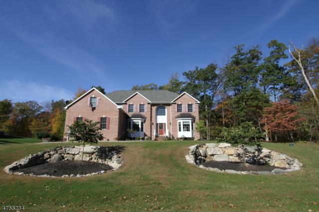 2 Liberty Trl, Andover Twp., NJ 07860 (MLS #3427851) :: The Dekanski Home Selling Team