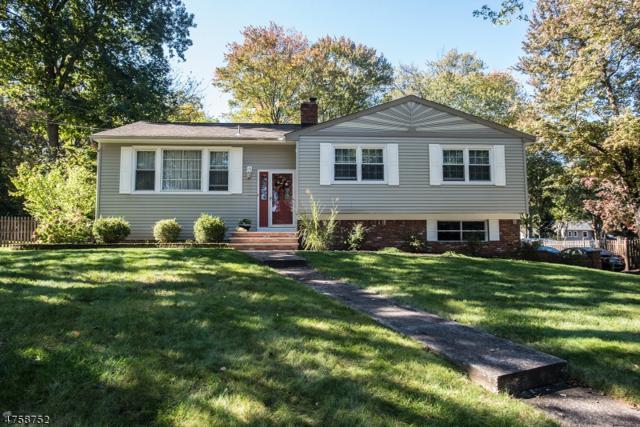 16 Cedar Ln, Roxbury Twp., NJ 07876 (MLS #3429466) :: The Dekanski Home Selling Team