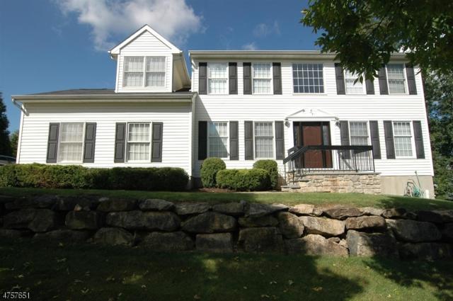 9 Long Ridge Ct, Roxbury Twp., NJ 07852 (MLS #3429686) :: The Dekanski Home Selling Team