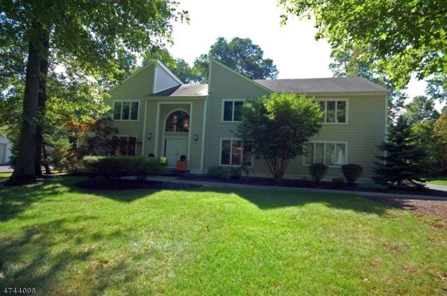 65 Grassman Pl, Berkeley Heights Twp., NJ 07922 (MLS #3429866) :: The Dekanski Home Selling Team
