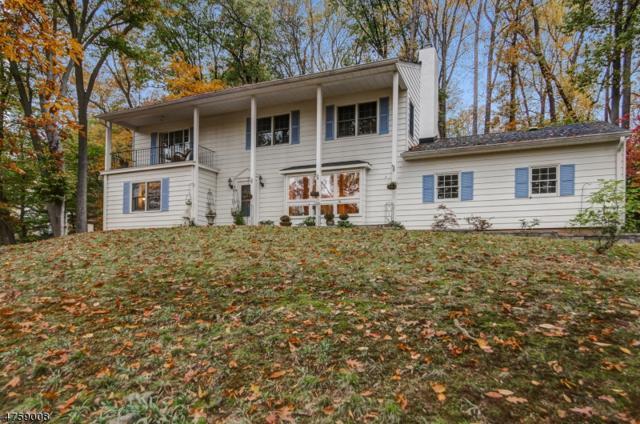 30 Cherryville Hollow Rd, Raritan Twp., NJ 08822 (MLS #3430203) :: The Dekanski Home Selling Team