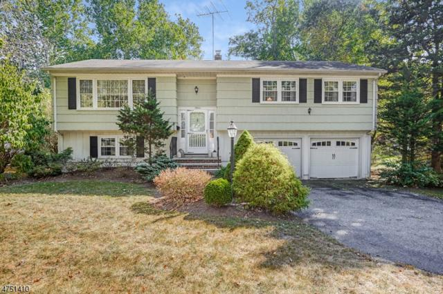 15 Badger Dr, Livingston Twp., NJ 07039 (MLS #3430625) :: SR Real Estate Group