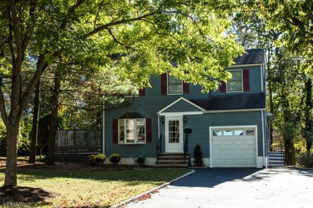 87 Irving Ave, Livingston Twp., NJ 07039 (MLS #3431090) :: SR Real Estate Group