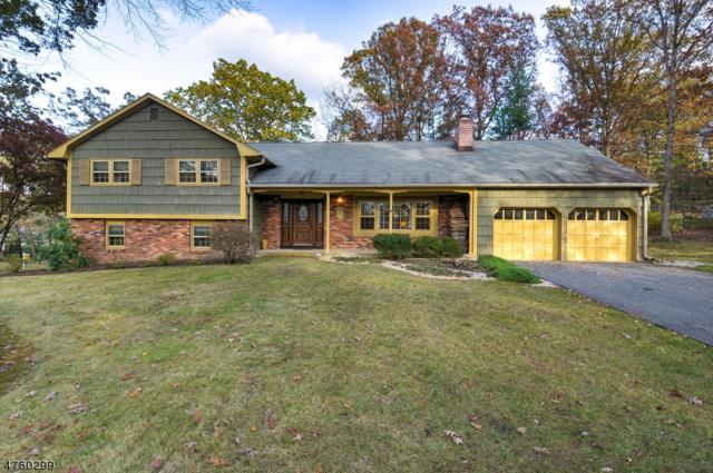 2 Gaines Rd, Montville Twp., NJ 07045 (MLS #3431148) :: SR Real Estate Group