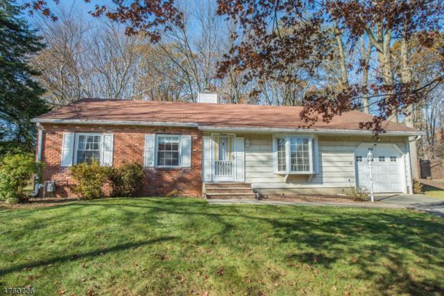 13 La Malfa Rd, Randolph Twp., NJ 07869 (MLS #3431369) :: The Dekanski Home Selling Team
