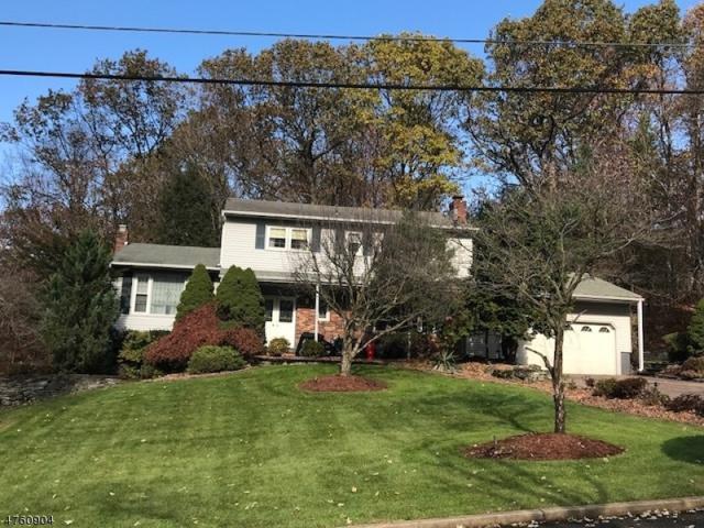 17 Fawn Dr, Montville Twp., NJ 07045 (MLS #3431524) :: SR Real Estate Group