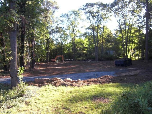 16 Zeek Rd, Denville Twp., NJ 07950 (MLS #3431715) :: SR Real Estate Group