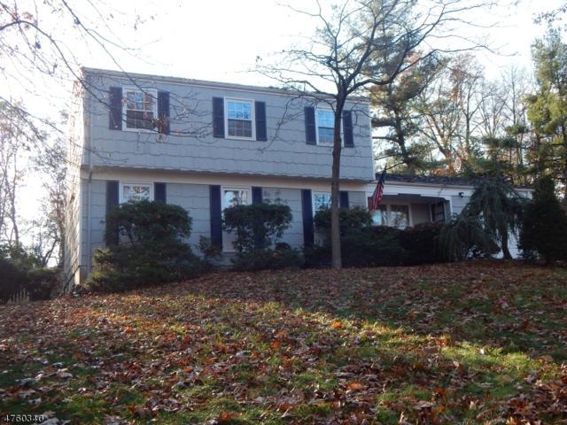 1221 Evergreen Dr, Bridgewater Twp., NJ 08807 (MLS #3431889) :: SR Real Estate Group