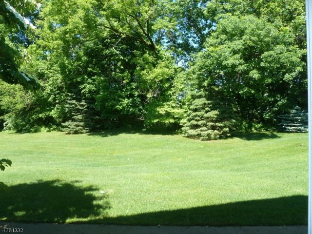 3 Springbrook Rd, Allamuchy Twp., NJ 07840 (MLS #3431893) :: SR Real Estate Group