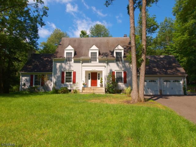 480 Hollow Road, Montgomery Twp., NJ 08558 (MLS #3432191) :: The Dekanski Home Selling Team