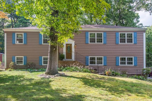 49 Woodland Ave, Mountain Lakes Boro, NJ 07046 (MLS #3432772) :: SR Real Estate Group
