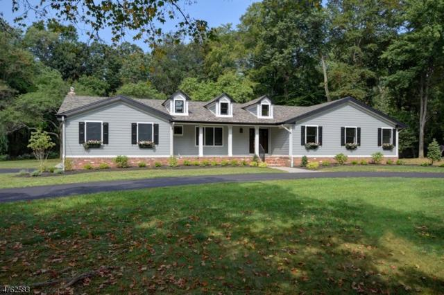 8 Jacobs Ln, Scotch Plains Twp., NJ 07076 (#3433457) :: Daunno Realty Services, LLC