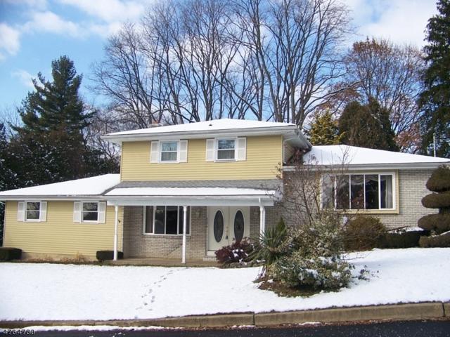 413 Lyndale St, Phillipsburg Town, NJ 08865 (MLS #3435110) :: Jason Freeby Group at Keller Williams Real Estate