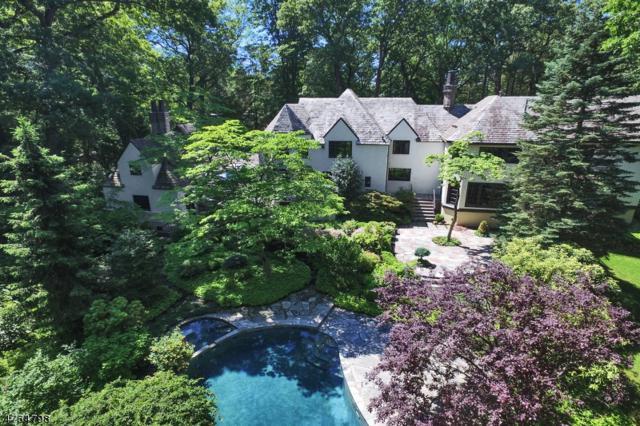 91 N. Pocono Rd, Denville Twp., NJ 07046 (MLS #3435173) :: Jason Freeby Group at Keller Williams Real Estate