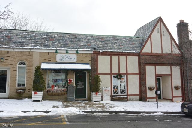 109 Cornelia St, Boonton Town, NJ 07005 (MLS #3436311) :: RE/MAX First Choice Realtors