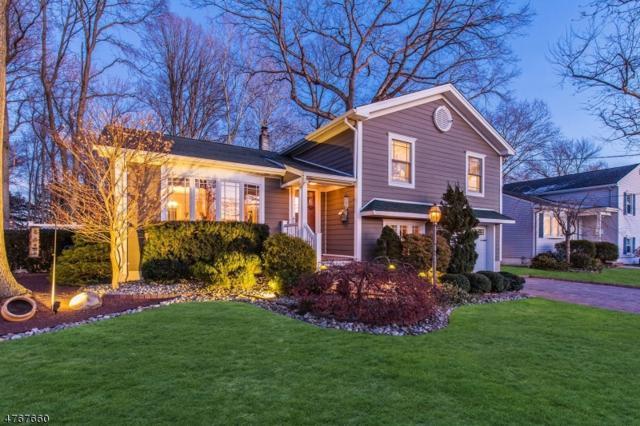 90 Pembrook Drive, Kenilworth Boro, NJ 07033 (MLS #3438126) :: The Dekanski Home Selling Team