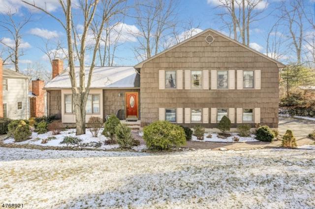 65 Hendricks Dr, Hanover Twp., NJ 07950 (MLS #3438662) :: SR Real Estate Group