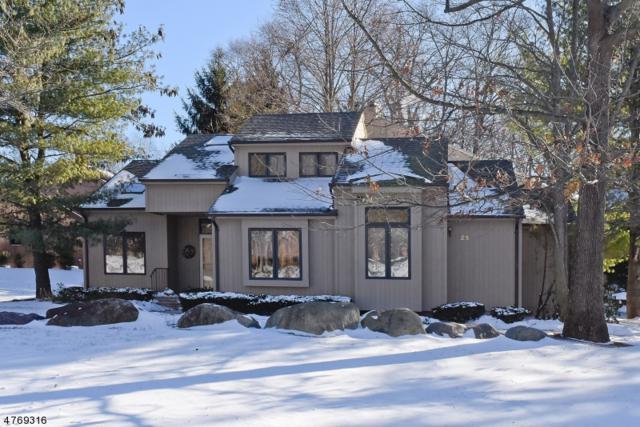 25 Sherwood Dr, Mountain Lakes Boro, NJ 07046 (MLS #3438990) :: SR Real Estate Group