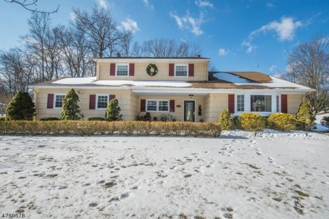 3 Baldwin Ct, Hanover Twp., NJ 07981 (MLS #3440079) :: SR Real Estate Group