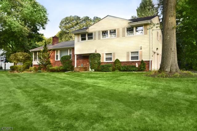 1097 Lenape Way, Scotch Plains Twp., NJ 07076 (#3440105) :: Daunno Realty Services, LLC