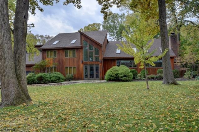13 Chiplou Ln, Scotch Plains Twp., NJ 07076 (#3440365) :: Daunno Realty Services, LLC