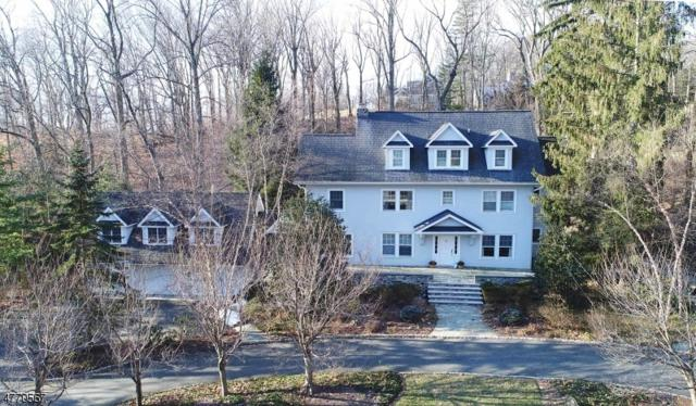 20 N Briarcliff Rd, Mountain Lakes Boro, NJ 07046 (MLS #3440435) :: SR Real Estate Group