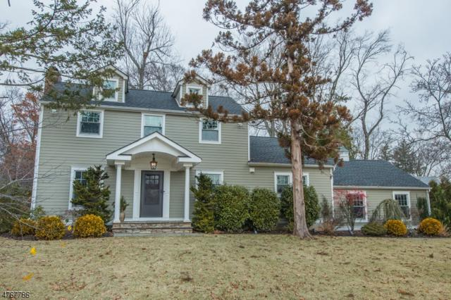 21 Cedar Ave, Madison Boro, NJ 07940 (MLS #3440496) :: SR Real Estate Group