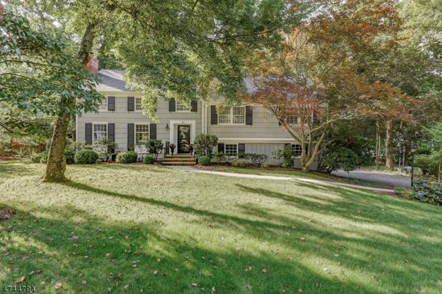 32 Tanglewood Dr, Summit City, NJ 07901 (MLS #3440563) :: SR Real Estate Group