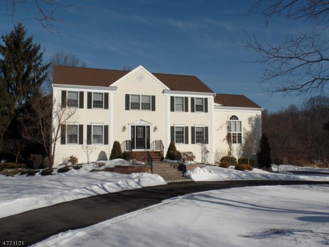 5 Leigh Ct, Randolph Twp., NJ 07869 (MLS #3440622) :: The Dekanski Home Selling Team