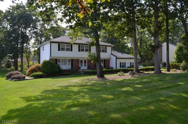 Address Not Published, Hanover Twp., NJ 07950 (MLS #3440789) :: SR Real Estate Group