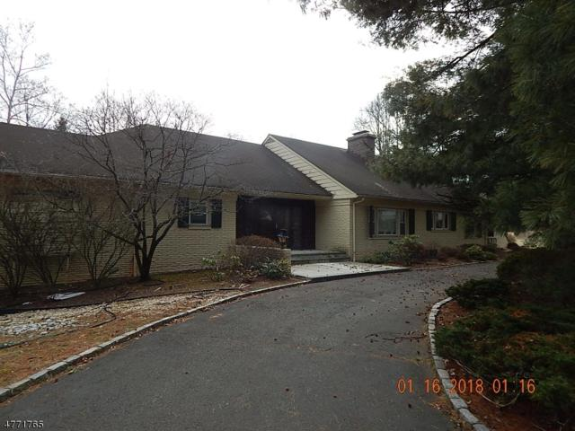 1120 Donamy Gln, Scotch Plains Twp., NJ 07076 (#3441176) :: Daunno Realty Services, LLC