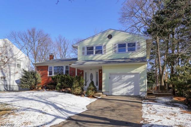 735 River Rd, Rahway City, NJ 07065 (MLS #3441458) :: The Dekanski Home Selling Team
