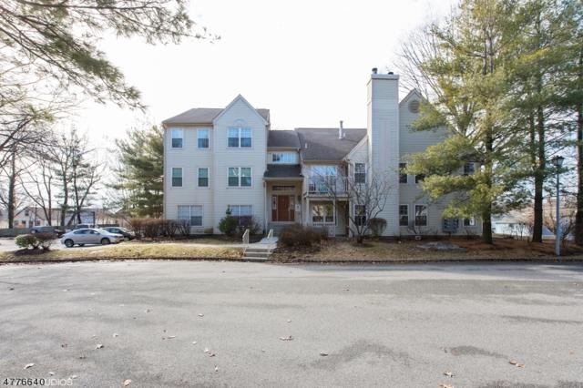 3 Juniper Ct #126, Clifton City, NJ 07014 (MLS #3445384) :: Pina Nazario