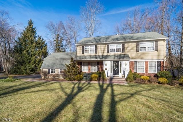 15 Hansell Rd, New Providence Boro, NJ 07974 (MLS #3446621) :: The Sue Adler Team