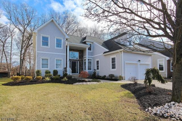 23 Rambling Dr, Scotch Plains Twp., NJ 07076 (#3446932) :: Daunno Realty Services, LLC
