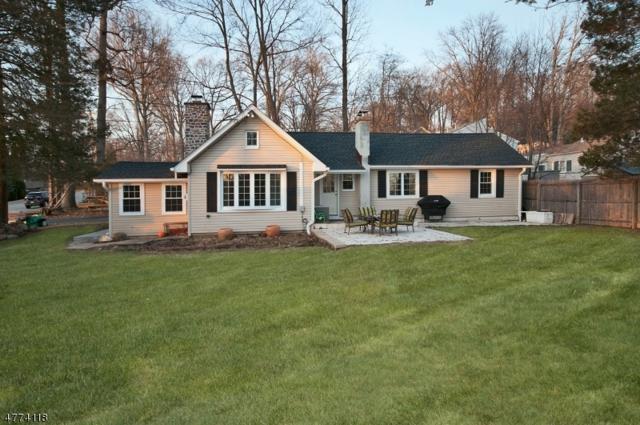 151 Schwarz Blvd, Jefferson Twp., NJ 07849 (MLS #3447554) :: Jason Freeby Group at Keller Williams Real Estate