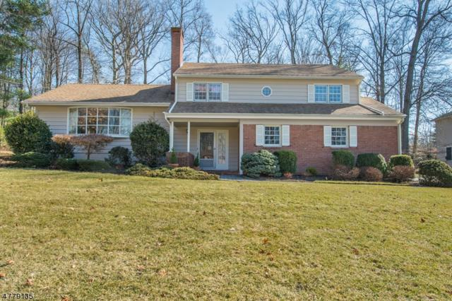 10 Woodland Ave, North Caldwell Boro, NJ 07006 (MLS #3447608) :: Pina Nazario