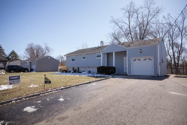 49 Buena Vista Ave, Piscataway Twp., NJ 08854 (MLS #3453576) :: SR Real Estate Group