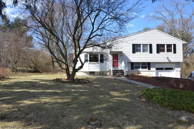 47 Harmony Rd, Randolph Twp., NJ 07869 (MLS #3453635) :: The Douglas Tucker Real Estate Team LLC