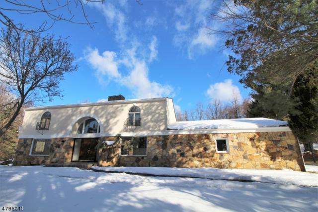 93 Ridge Rd, Allamuchy Twp., NJ 07840 (MLS #3454047) :: Jason Freeby Group at Keller Williams Real Estate