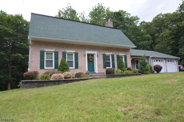 24 Sanders Rd, Rockaway Twp., NJ 07866 (MLS #3454168) :: Jason Freeby Group at Keller Williams Real Estate