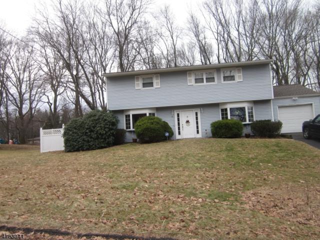 10 Draco Dr, Randolph Twp., NJ 07869 (MLS #3454523) :: The Douglas Tucker Real Estate Team LLC