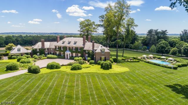 157 Village Rd, Harding Twp., NJ 07935 (MLS #3454603) :: SR Real Estate Group