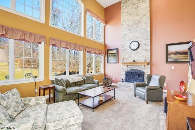 52 Vista Dr, Mount Olive Twp., NJ 07836 (MLS #3455021) :: The Douglas Tucker Real Estate Team LLC