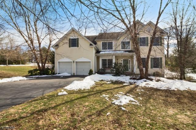 1 Southern Hills Dr, Montgomery Twp., NJ 08558 (MLS #3455205) :: SR Real Estate Group