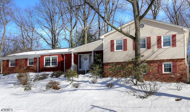 238 Park Ave, North Caldwell Boro, NJ 07006 (MLS #3455591) :: SR Real Estate Group